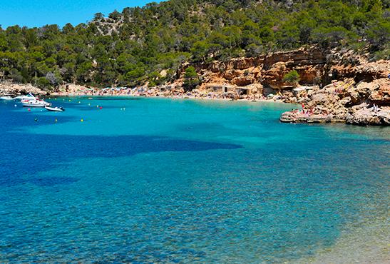 Cala Salada, una de las mejores playas de Ibiza