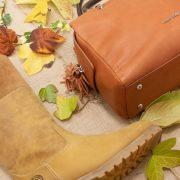 Portada colores otoño